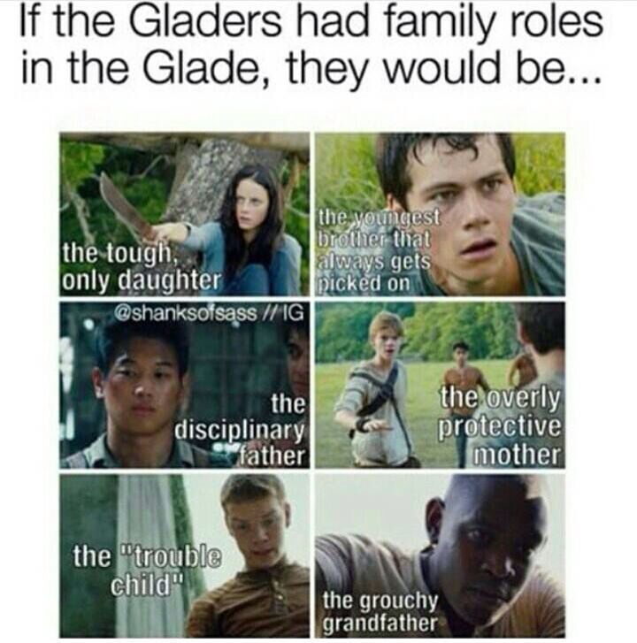 """Newt """"the protective mother"""" hahaha--> omg 😂👌🏻"""