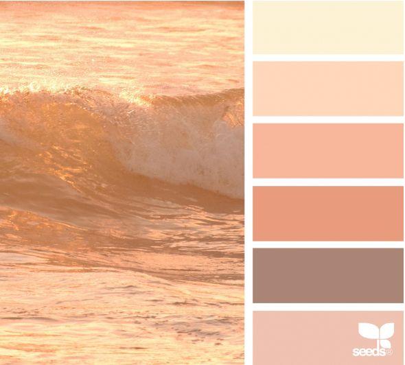 Color corallo