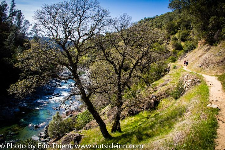 Buttermilk Bend Guided Wildflower Hikes, Saturday & Sundays, 11am, South Yuba River