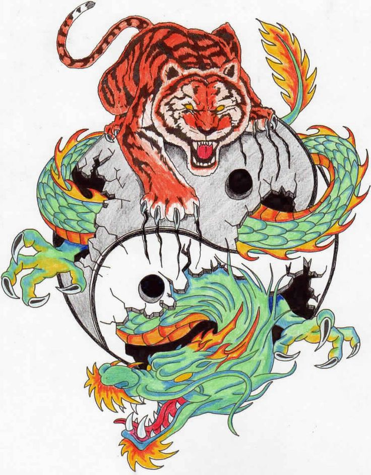 Japanese tiger and dragon tattoo