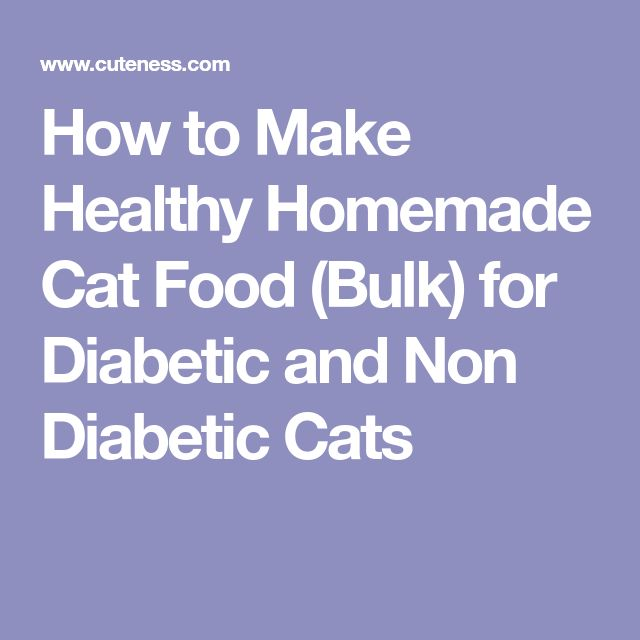 How to Make Healthy Homemade Cat Food (Bulk) for Diabetic and Non Diabetic Cats