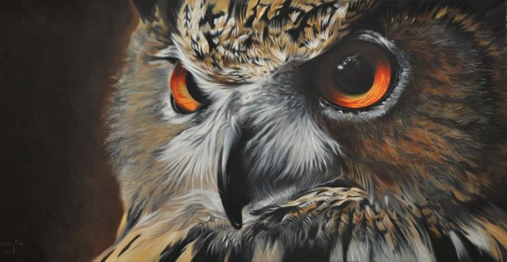Awesome Owl Portrait By Artist David Pennington