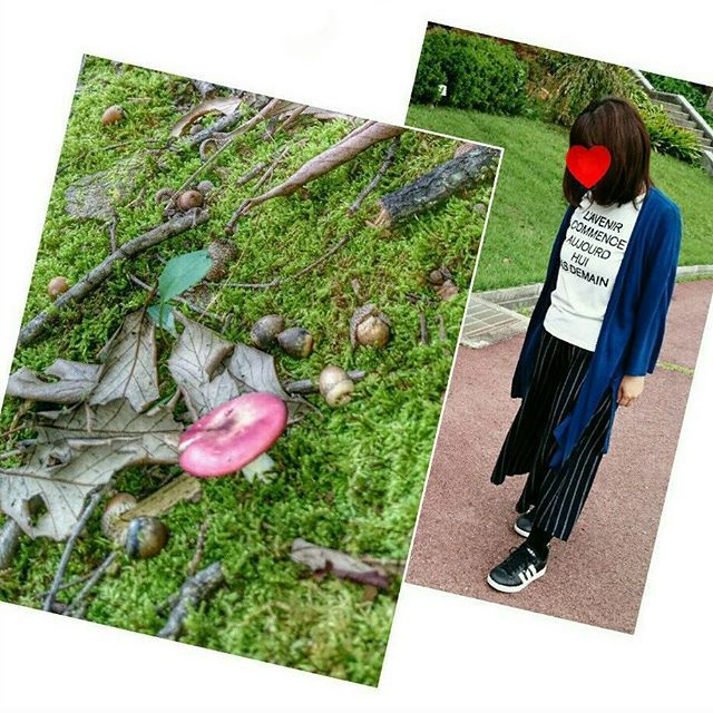 【mizutamano_penguin】さんのInstagramをピンしています。 《. . .  #山  #標高高め  #軽めの登山  #登山 🗻 .  #塩山  #公園  #森  #散策  #ハイキング 🗻 .  #キノコ  #発見  #毒キノコ 的な色 🍄 .  #運動  #きのこ  #どんぐり 🍄 .  #猿 のような鳴き声が聞こえた 🐒 .  #mountain  #park  #autumn 🍁 .  #walking  #nature》