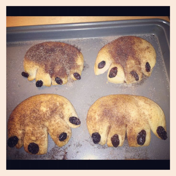 Hibernation week snack- bear claws! Biscuits (cut with knife to make toes, add raisins and sprinkle with cinnamon sugar, then bake!)