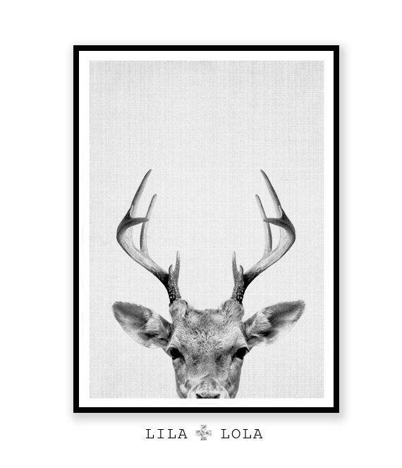 Impresión de ciervos cornamentas de ciervos bosques por lilandlola