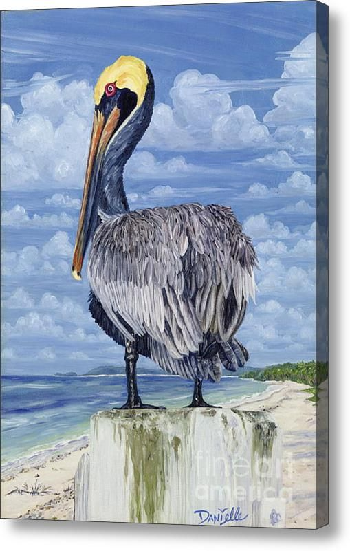 If I were rich....I love this painting.  It's called The Pelican Perch Canvas Print.