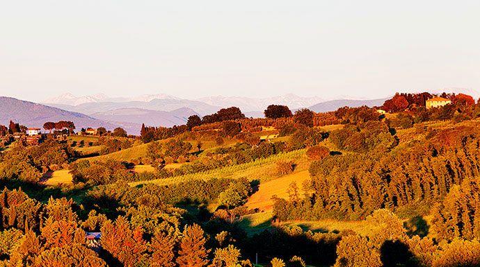 Bellissimo borgo in provincia di Perugia, #Bettona è circondato da cinta murarie medievali, che incorporano anche porzioni di mura etrusche. Questa zona è rinomata per la produzione di ottimo olio.