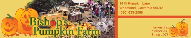 Home Page for Bishop's Pumpkin Farm in Wheatland, California-Harvesting Memories Since 1973!