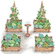 Creating raised-bed kitchen gardens
