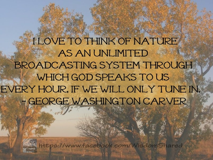 God speaks through nature... #George Washington Carver, #Quote #words