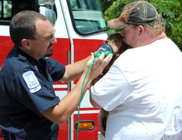 Dachshund saved from fire. They used pet oxygen mask