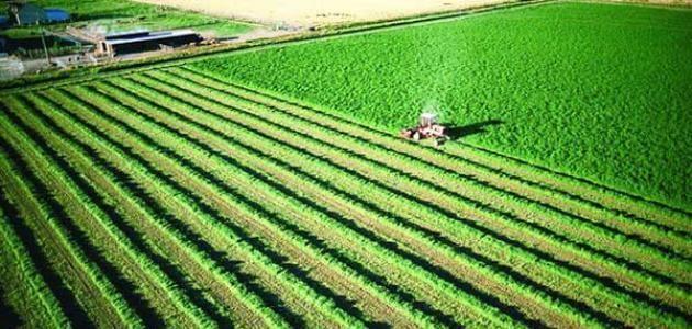 بحث عن التكنولوجيا المستخدمة في الزراعة In 2020 Agriculture Golf Courses Field