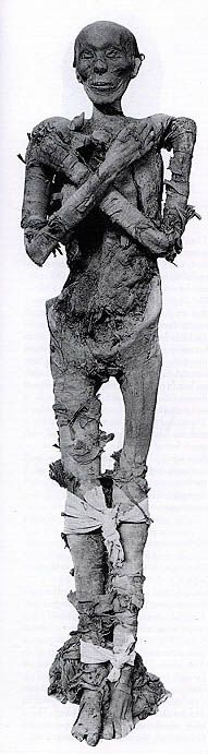 Tuthmosis II (c. 1518-1504 B.C.)  Either he or his son might be the Pharaoh of the Exodus.