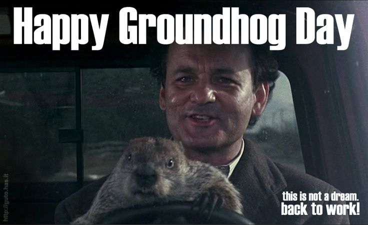 best groundhog day images groundhog day movie  dia da marmota groundhog daylos