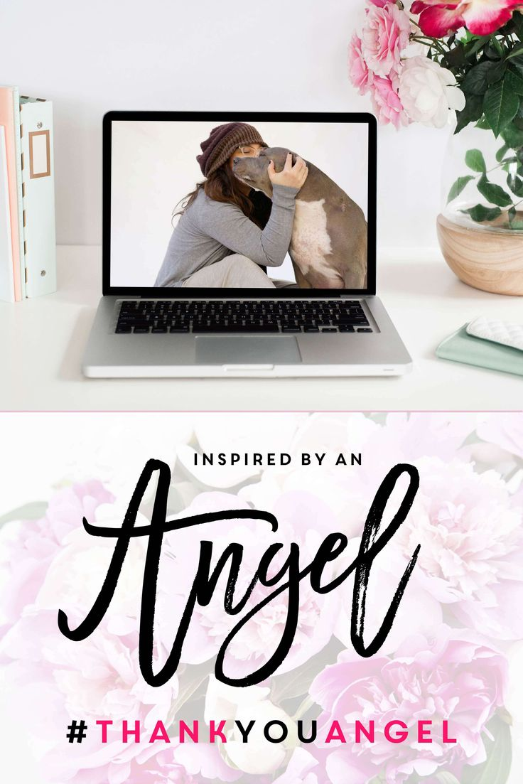 Inspired by an Angel - Use storytelling in social media to make your audience fall in love with your brand | By KOTAW Girl Gang members Bri Prooker and Kelsey Prooker | KOTAW Content Marketing | #PitBullsAndPersonalBranding