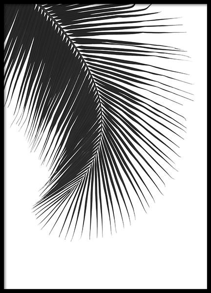 Stylish poster with a photo of a palm leaf in a stylish shape. Fits the modern home and its interior design perfectly. This simple black and white poster is both interesting and easily matched with other prints, looks just as good alone as in a collage or gallery wall. Mix your favorites and create your dream wall. www.desenio.com
