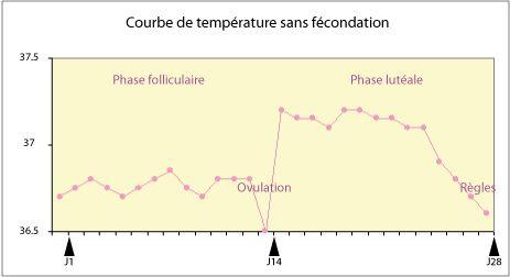 Courbe de température - Fiche pratique