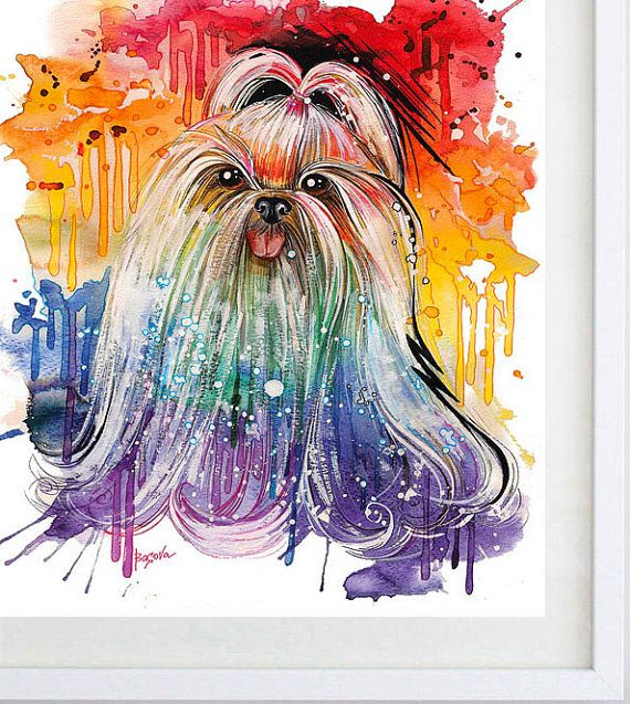 SHIH TZU Fine Art Print 8 x 10 Modern Art Print  dog by BasovaArt