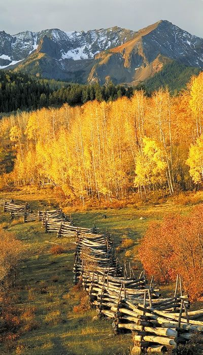 17 Best Ideas About Aspen On Pinterest Aspen Colorado
