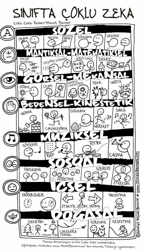 Çocuk eğitiminde (sınıfta) çeşitli alanlarda zekâ çeşitlerini gösteren bilgi çizgesi
