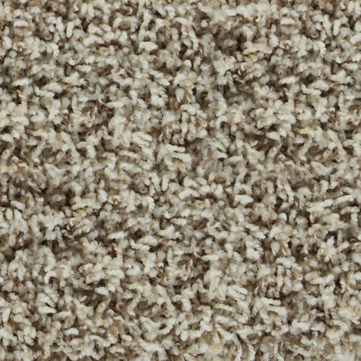 14 Best Wall To Wall Carpet Colors Images On Pinterest