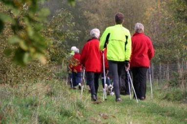 Group Elderly Activities