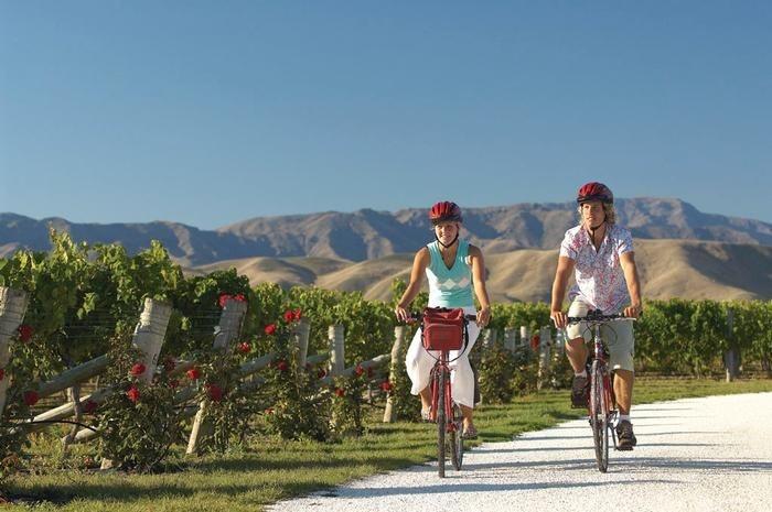 Biking the NZ wine trail
