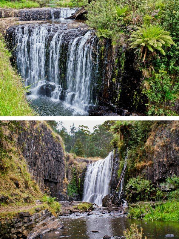 Guide Falls Reserve. Tasmania