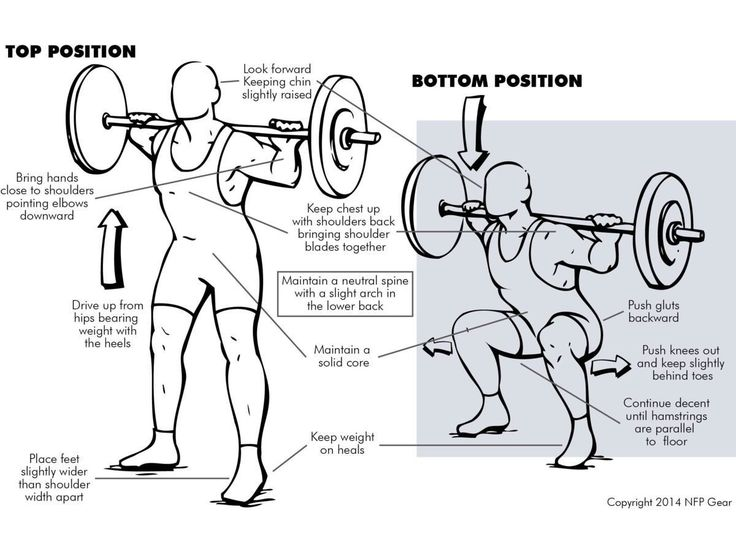 #Squats work your hamstrings, quads, glutes and groin. But also your abs, obliques and lower back muscles!