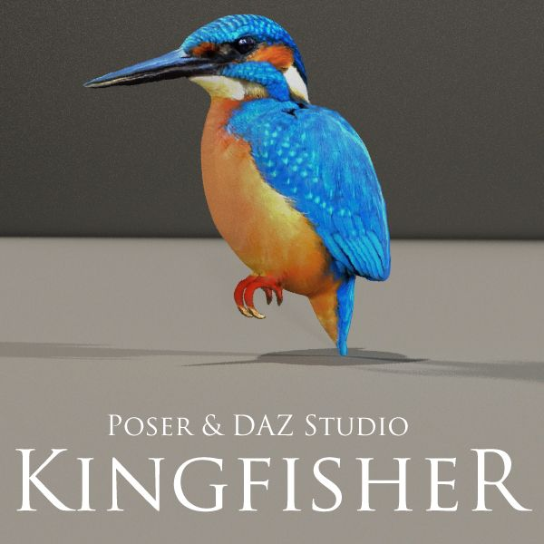 FREE Kingfisher Prop for Poser and DAZ Studio http://www.most-digital-creations.com/freestuff.htm