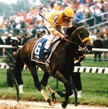 120. 1994. Go for Gin. (No Man o' War or Secretariat lineage.)