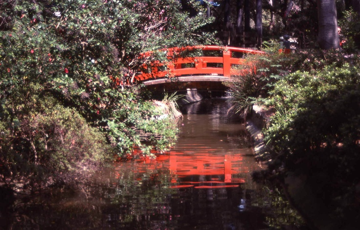 17 Best Images About Descanso Gardens On Pinterest Gardens Canada And Los Angeles Area