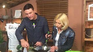 Виталий Декабрев - YouTube