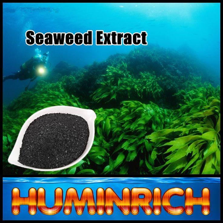 """HuminRich"" SY1001 Ascophyllum Nodosum Source Seaweed Extract NPK Fertilizer"