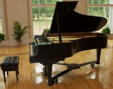 Beginner's Guide to the Grand Piano - Grand Piano