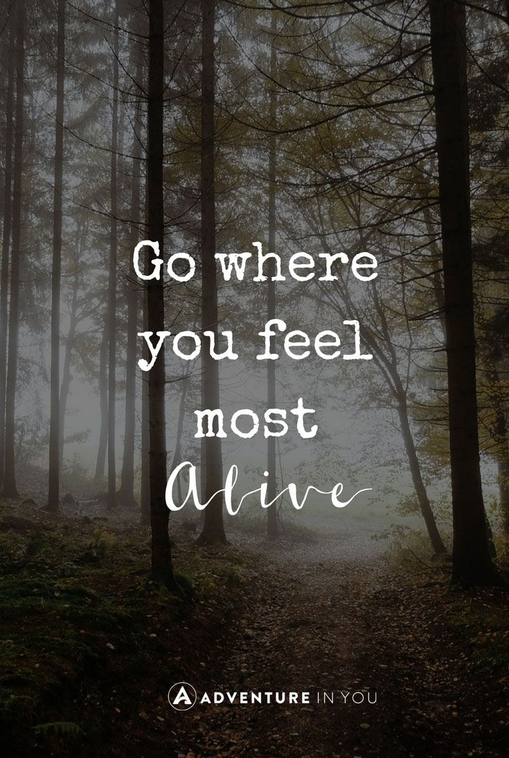 25+ best Nature quotes on Pinterest   Love nature quotes, Natural ...
