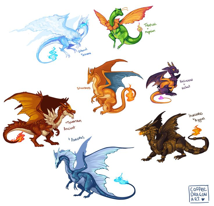 """coffeedragonart: """"Bit late to the pokemon breed variations party, but here ya go. Started this ages ago when it was still a thing and only just finished. Charizard + Altaria/Meganium/Noibat/Aggron/Tyrantrum/Aurorus. """""""