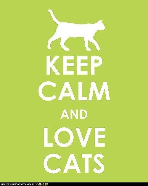 Keep Calm~love Cats