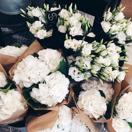 Bunches of white flowers | Fresh flower boutques | floral arrangements | floral design | flower design