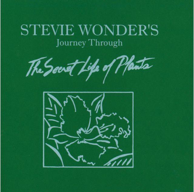 Bedste 25 Stevie Wonder-ideer på Pinterest Stevie Wonder-1104