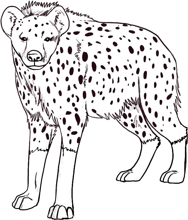 Hyena Coloring Pages 1 Speech Pinterest Coloring Hyena Coloring Pages