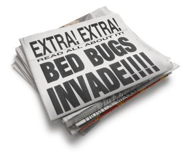Stopping the Tiny Vampires of New York City- The Simple Steps to Avoiding Bed Bug Infestations in Your NYC Home