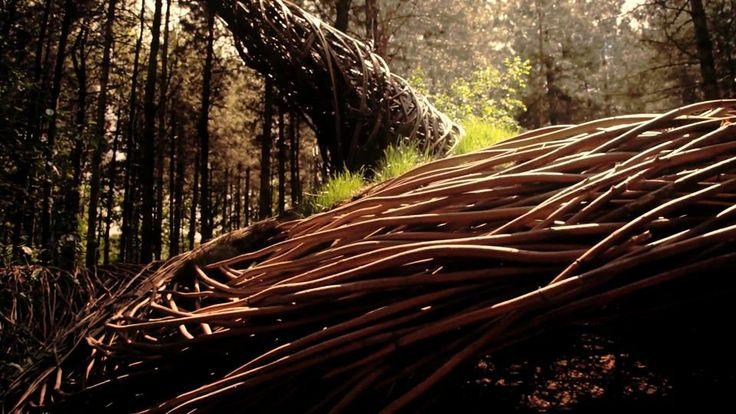 Will Beckers - Land Art Artist - The Willowman. Will Beckers, Land art artist, alias The Willowman, has created an eco art installation in t...