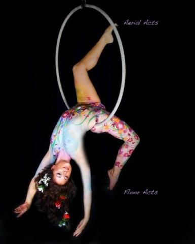 17 best images about aerial hoop lyra on pinterest