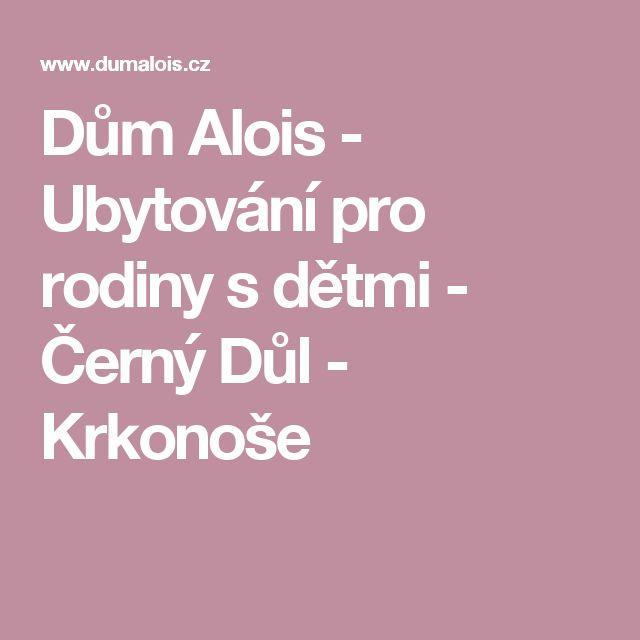 Dům Alois - Ubytování pro rodiny s dětmi - Černý Důl - Krkonoše