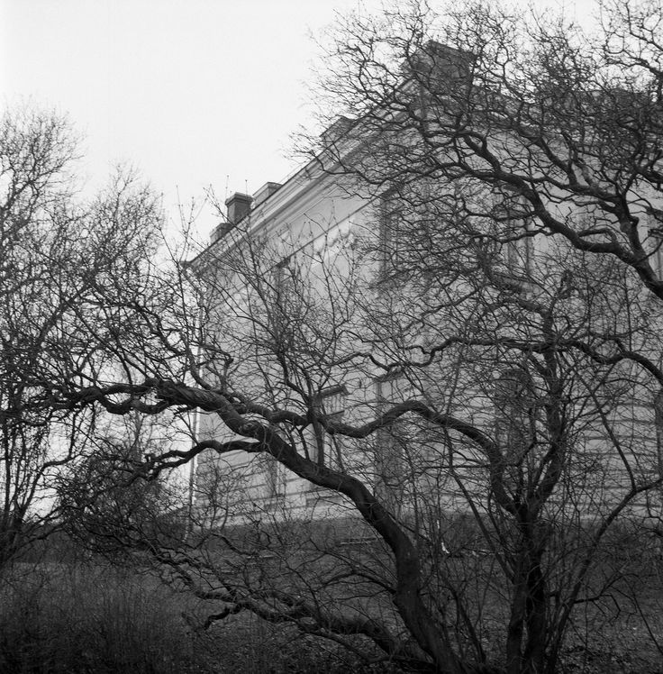 2014_Nov_Suomenlinna-Sveaborg_Rolleicord_Xenar_014