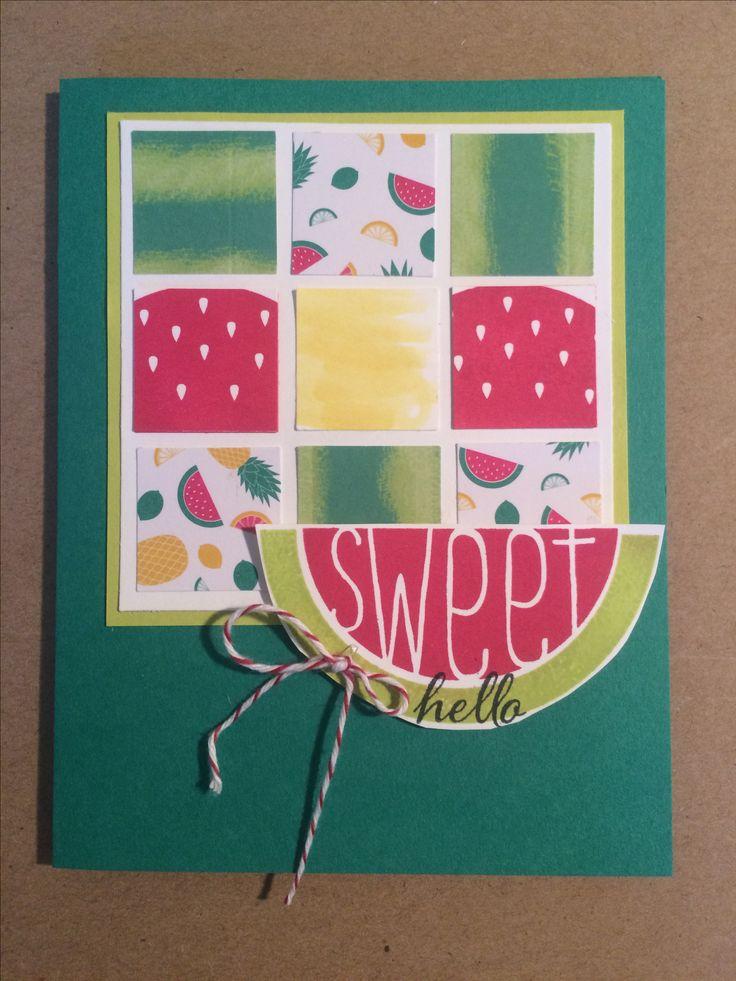 Stampin Up Paper Pumpkin June 2017  paper pumpkin One in a Melon alternative by Pat McG.
