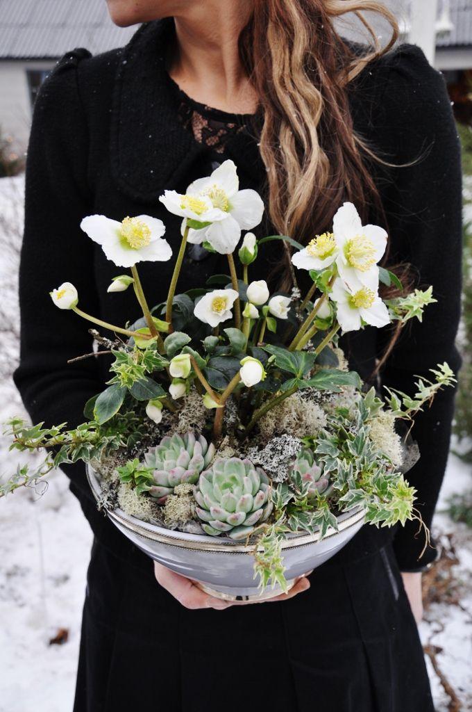 Image via: liljochtulpaner.blogspot.com