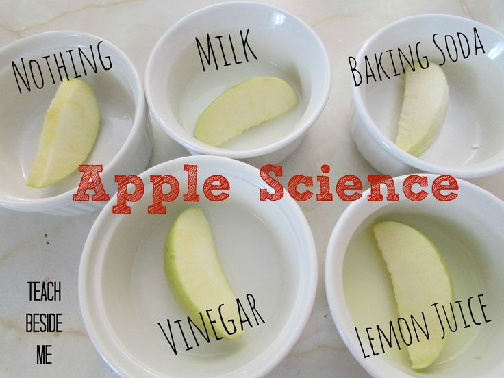 apple science experiment - What keeps them from turning brown?