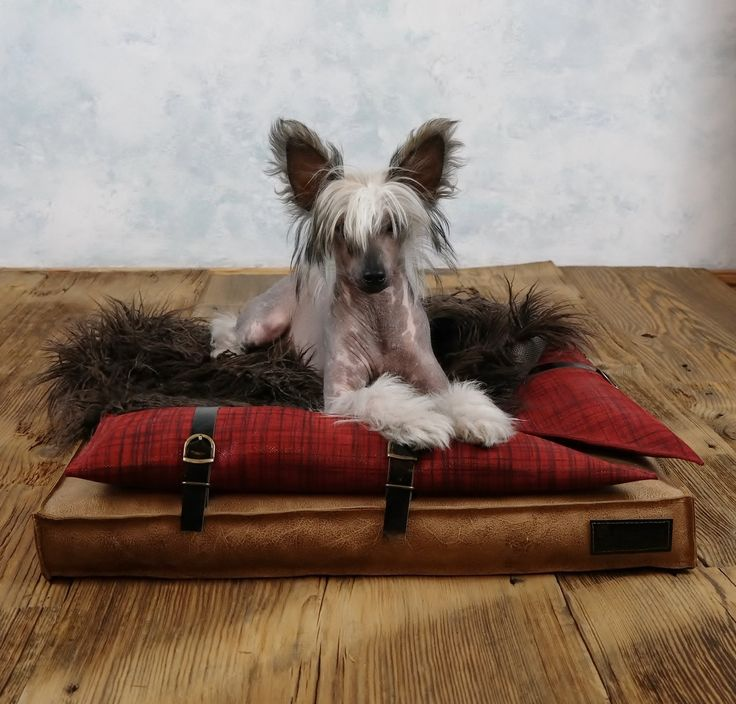 Leather square dog bed by ooMelampus on Etsy
